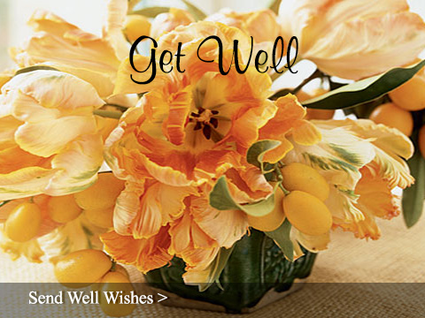 Send Get Well Flowers Anywhere - Sun City Florist & Gifts