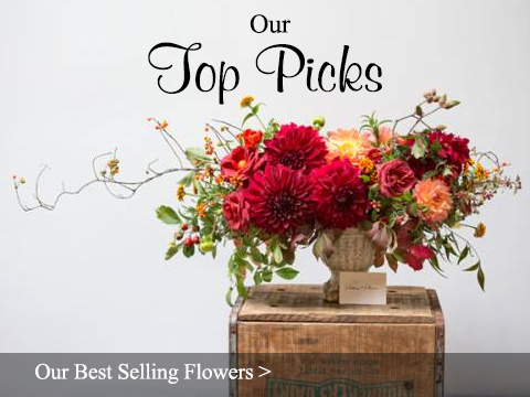 Our Best Selling Flower Arrangements - Sun City Florist & Gifts