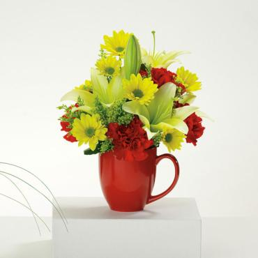 Good Morning Mug/Lillies,Dasies,Carns,Solidego