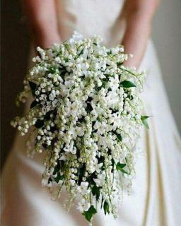 Adorable/Stephanotis,Lily Of The  Valley