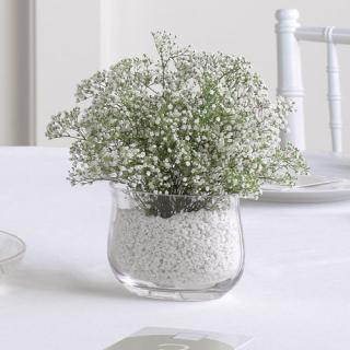 Baby\'s Breath Vase Arrangement