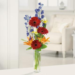 Gerbera Greetings/Gerbs,Iris,Lillies,Delph