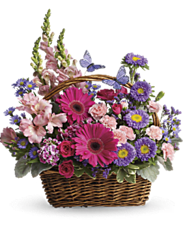 "Country Basket Blooms,10""Snaps,Alstro,Minni Carns,Matsumoto"