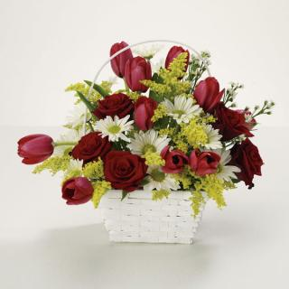 Bright Basket Of Joy/Tulips,Daisies,Roses,Solidego