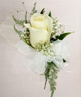 Rose Corsage/Rose, Plumosa,Baby Breath/Color Optional