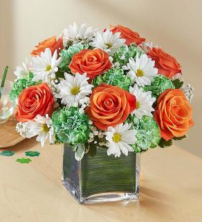 Irish Blessings/Roses,Carns,Daisies,Baby Breath