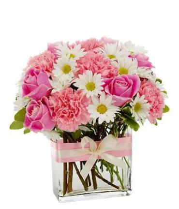 Mother Pretty In Pink/Roses,Daisy,Carnations