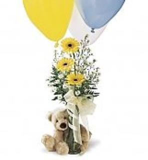 Bear,Vase and Balloons/CLICK FOR INFORMATION