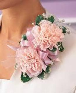 Carnation Corsage/Carnation,Baby Breath