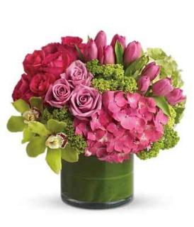 New Sensation/Cymbidium Orchid,Rose,Tulip,Hydrangea,Mini Hydrang
