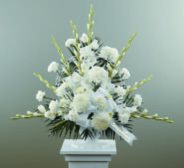 Dignity In White/Gladiolus,Football Pompoms