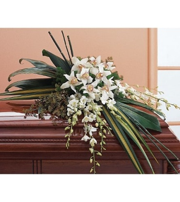 A Orchid Casket Spray