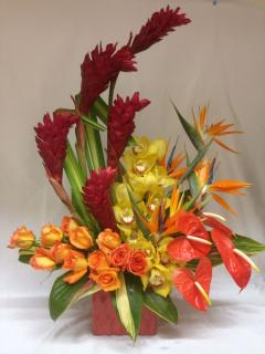 Oriental/Ginger,Orchids,roses,Antheriums,Birds of Paradise